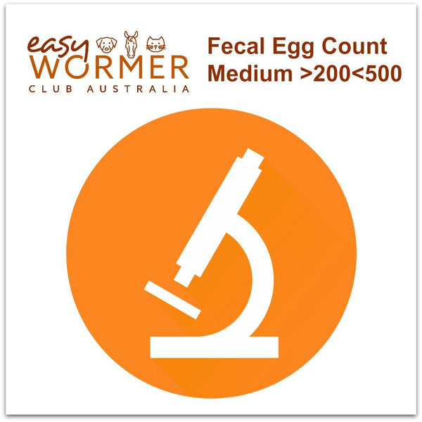 Moderate FEC Worming Program - 3 x a Year
