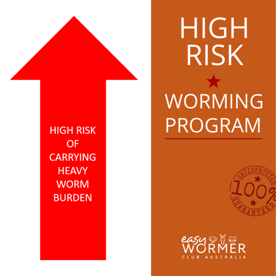 Worming Program For Horses Who Have a High Risk of Carrying a Heavy Worm Burden