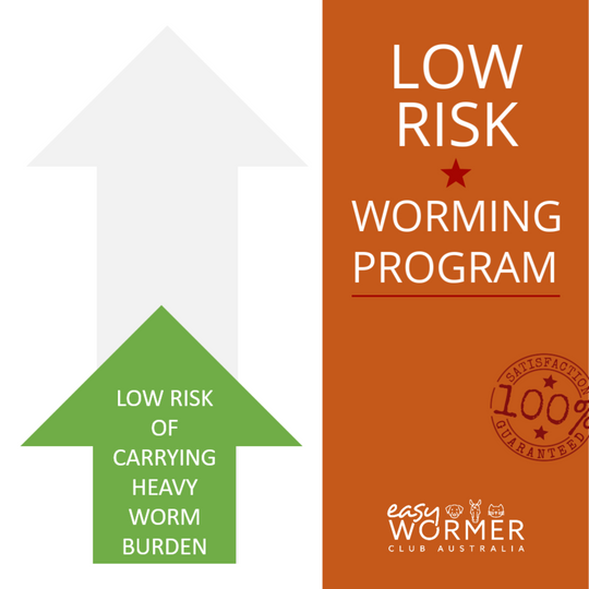 Worming Program for Horses With a low Risk of Heavy Worm Burden
