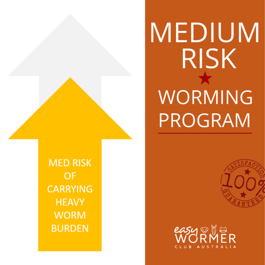 Worming Program for Horses with a medium risk of carrying a heavy worm burden