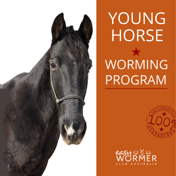 Young Horse Rotational Worming Program 4 x a Year