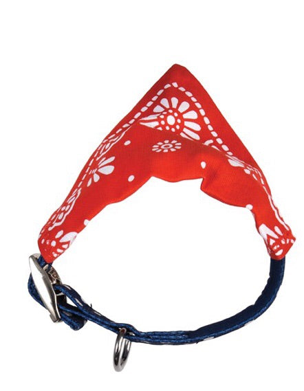 Rex international red paisley dog bandana for large/med dogs