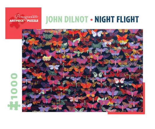 JIGSAW PUZZLE NIGHT FLIGHT