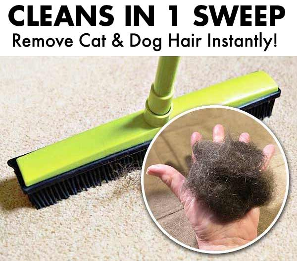 Pet Hair Remover Rubber Broom – Modern Beyond