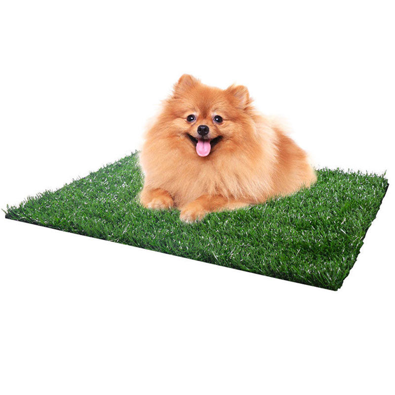 Dog Training Indoor Potty Grass