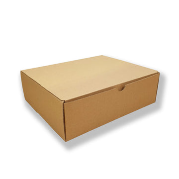 Mailing Box Rectangle L