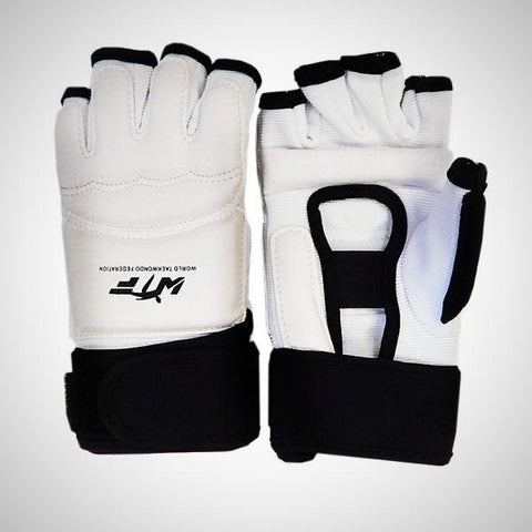 AAMA Taekwondo Gloves