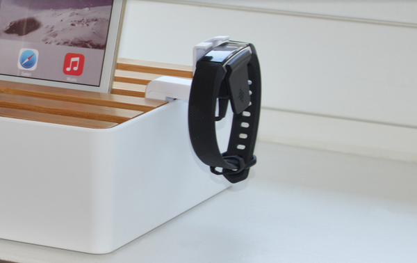 White Fitbit Mount