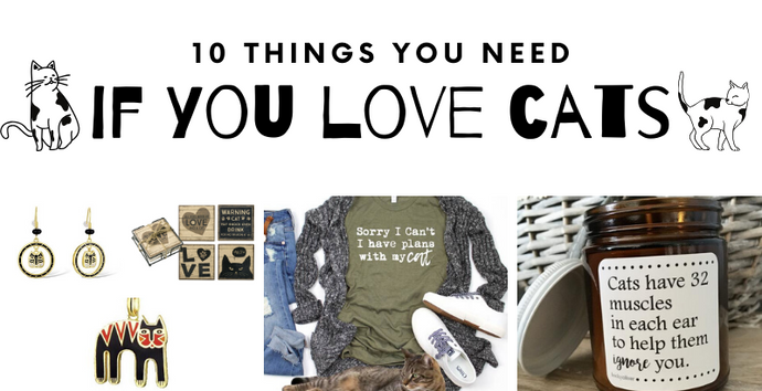 10 Things You Need If You Love Cats