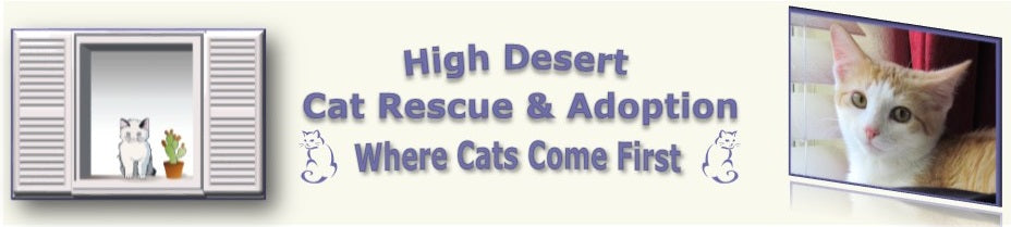 High Desert Cat Rescue
