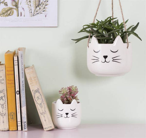 Cat Whiskers Planter