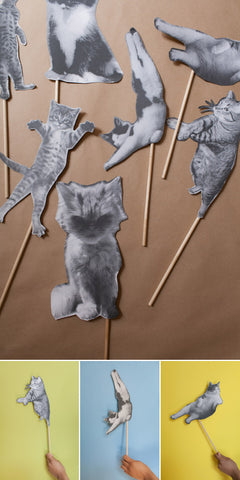 Cat Straws by Jordan from Oh Happy Day