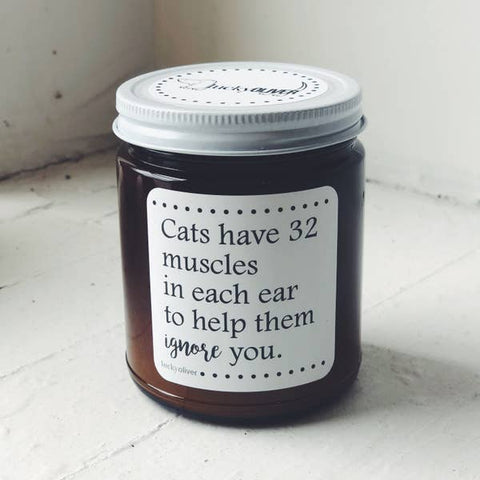 Cats Have 32 Muscles In Each Ear To Help Them Ignore You Candle
