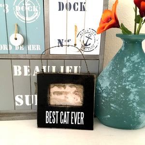 Cat Picture Frame Featuring the Words Best Cat Ever Printed On the Front