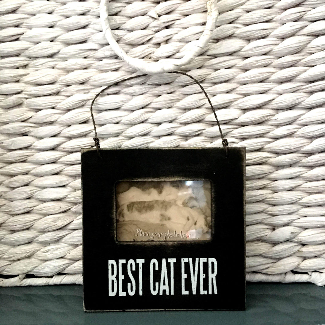 Best Cat Ever Cat Photo Frame With a Magnet Back and a Peg for Standing