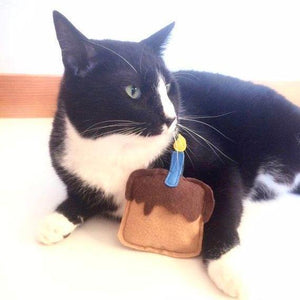 Gifts for Cats, Chocolate Birthday Cake Cat Toy with Catnip