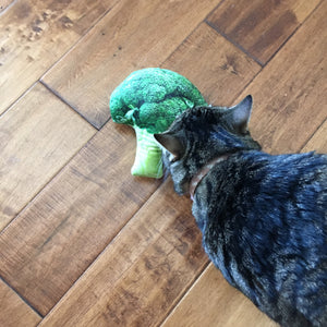 Funny Cat Toy Shaped as Broccoli