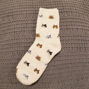 Womens Cat Socks, Cute Socks with Calico Cats On Them