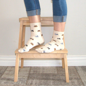 Cat Socks for Cat Lovers with Calico Cat Face Print
