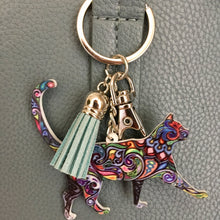 Load image into Gallery viewer, Colorful Cat Key Chain and Bag Charm