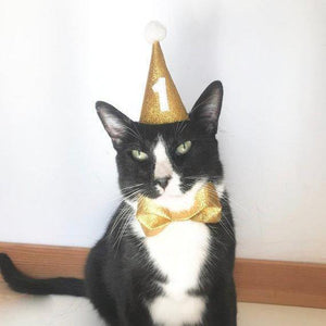 Cat Birthday Gifts, Cat Birthday Outfit Featuring a Party Hat with a Custom Age Number and a Bow Tie