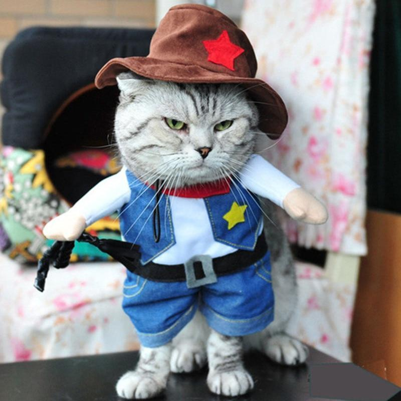 Cat Halloween Costume Featuring a Cowboy Outfit and a Hat