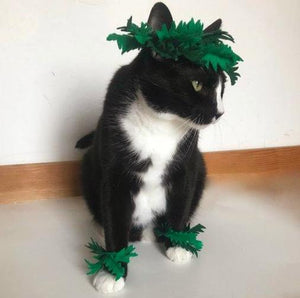 Halloween Costumes for Cats, Handmade Cat Fern Headdress and Cuffs Cat Costume