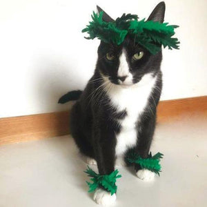 Pet Costumes for Cat, Cat Halloween Costumes, Cat Fern Headdress and Cuffs