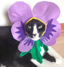 Load image into Gallery viewer, Cat Costumes for Cats, Handmade Violet Flower Cat Costume Perfect for Halloween