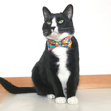 Load image into Gallery viewer, Cute Cat Collar with Colorful Jelly Beans