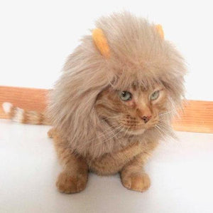 Funny Costumes for Cats, Handmade Cat Lion Hat with an Adjustable Velcro Strap