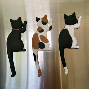 Cat Refrigerator Magnets Featuring a Black Cat A Bicolor Cat and a Calico Cat