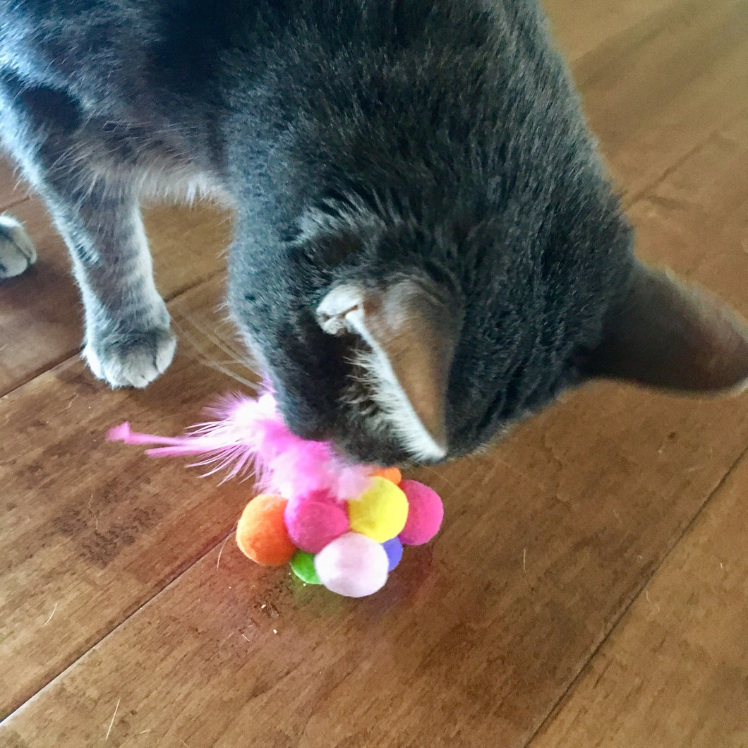 Cute Cat Toy Featuring Feathers and Felt Balls