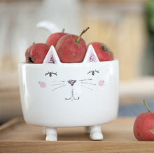 Load image into Gallery viewer, Cat Home Decor for Cat Lovers, Cute Ceramic White Cat Flower Pot