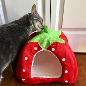 Funny Cat Bed Shaped as a Strawberry