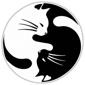 Cat Car Window Stickers, Cat Sticker Featuring Cuddled Up Black and White Cat
