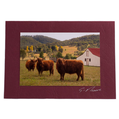 Photo 2 - photo gift card by Susan Jarman