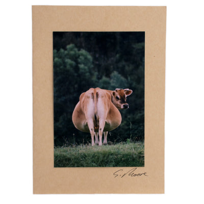 Photo 5 - photo gift card by Susan Jarman