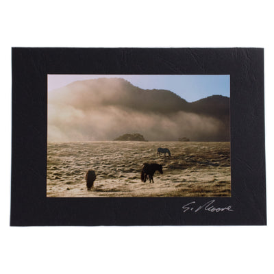 Photo 9 - photo gift card by Susan Jarman