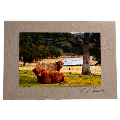 Photo 11 - photo gift card by Susan Jarman