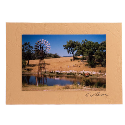 Photo 13 - photo gift card by Susan Jarman