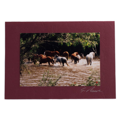 Photo 16 - photo gift card by Susan Jarman
