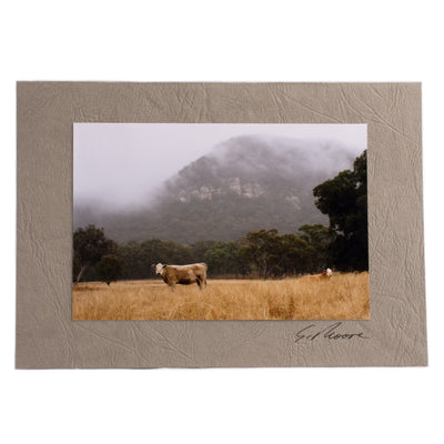 Photo 18 - photo gift card by Susan Jarman