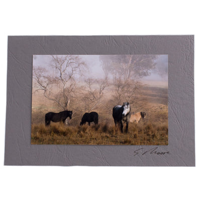 Photo 19 - photo gift card by Susan Jarman
