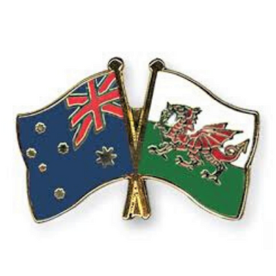 Friendship Flag Lapel or Hat Pin