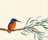 Linen Tea Towel - Azure Kingfisher