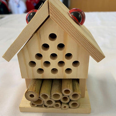 Insect House - Gift in a Tin