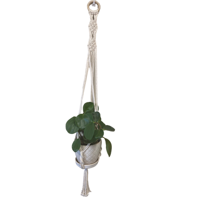The Diamond Macrame Pot Hanger