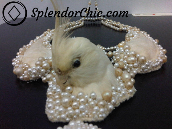 Taxidermy Dead Parrot Necklace