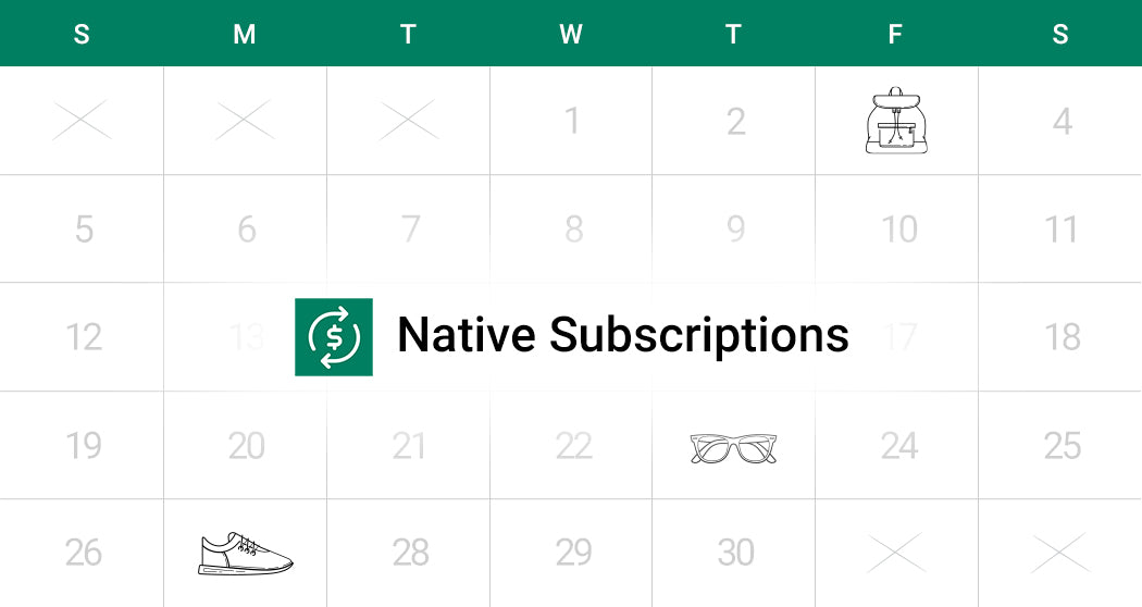 Introducing Native Subscription Shopify App